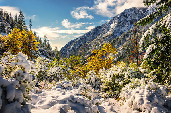 The Trinity Alps are a mountain range in Siskiyou County and Trinity County, in Northern California. They are a subrange of the Klamath Mountains and located to the north of Weaverville