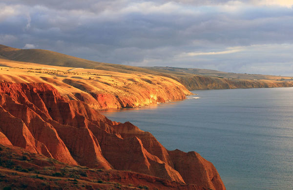 View of Sellicks beach cliffs at sunset in South Australia