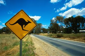 travel/south australia sa country regions barossa valley/kangaroo warning road sign barossa valley south